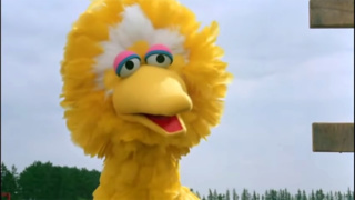 BIG BIRD (Sesame Street Presents: Follow That Bird)