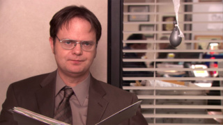 RAINN WILSON (The Office)
